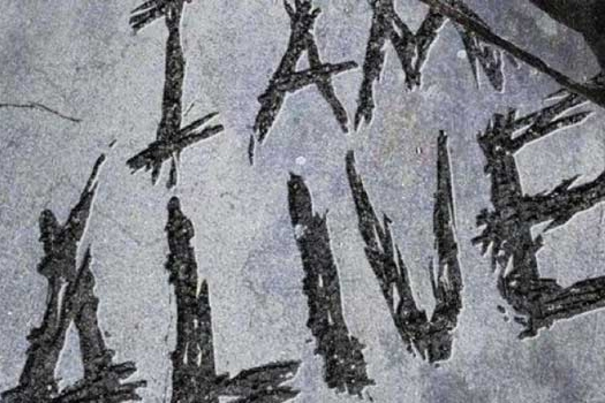 I Am Alive para PC antes de lo previsto. Trailer de lanzamiento