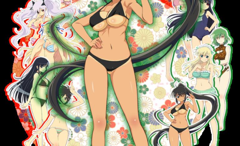 Anime de Senran Kagura para el 6 de Enero de 2013, buen regalo de Reyes
